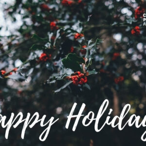 happy-holidays-ecard-donation