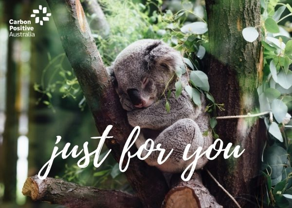 Just for You Koala eCard Gift Donation