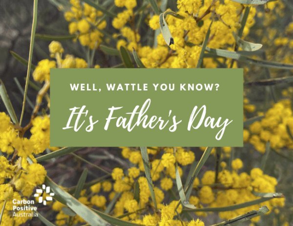 Happy Father's Day - Wattle You Know